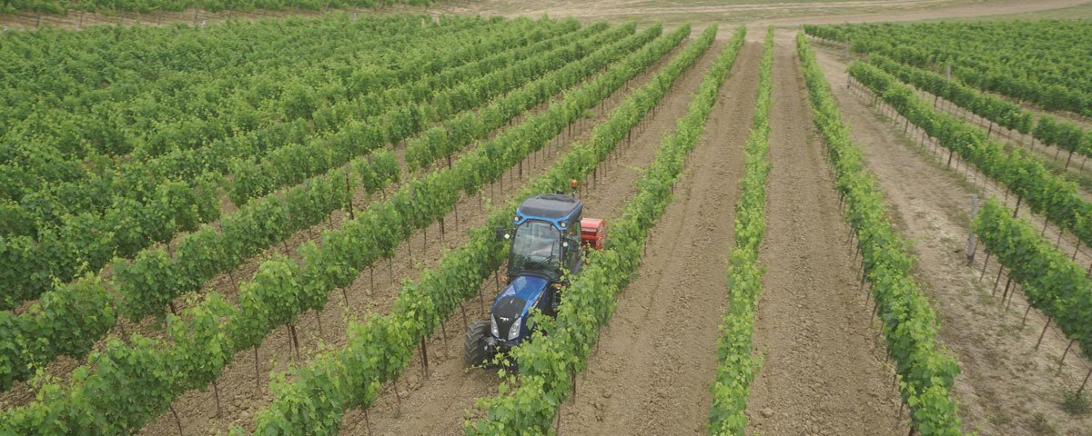 incentivi 2020 agricoltura
