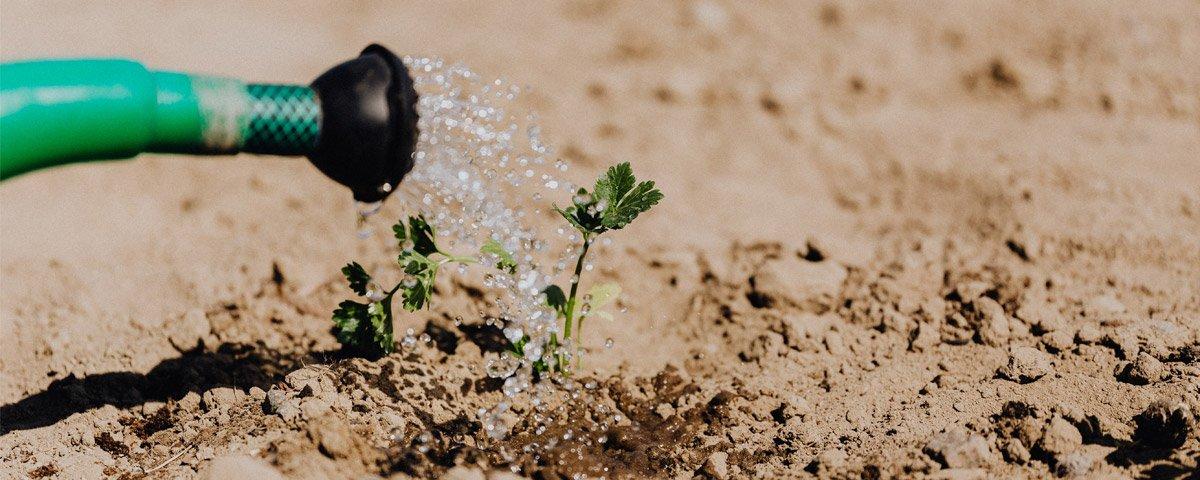 Risorse idriche agricoltura