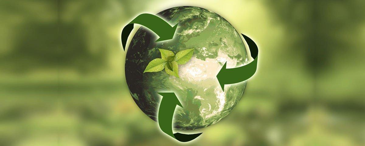 circular economy agriculture